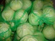 продаю  капусту в г.Талдыкорган